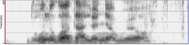 국립과학수사연구원이 사용하는 음성분석의 예시. 포먼트(검게 칠해진 부분)의 일치도를 분석해 동일인 여부를 판단해낸다. - 국립과학수사연구원 제공
